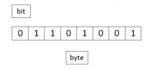 disegno con la scritta bit in alto a sinistra, 8 caselle che contengono 0 o 1 e la scritta byte in basso al centro