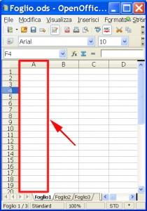 Foglio di Excel con evidenziata da un triangolo rosso una colonna
