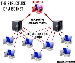struttura di una botnet